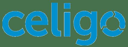 celigo netsuite implementation and sales