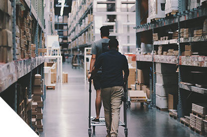 netsuite for wholesale distribution