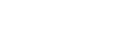 netsuite sales and implementation